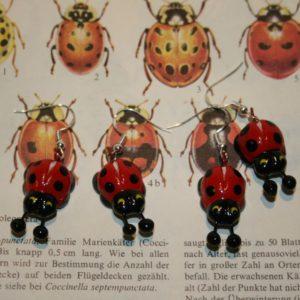 Käfer, Käfer-Ohrringe, Marienkäfer, Ohrringe mit Marienkäfern