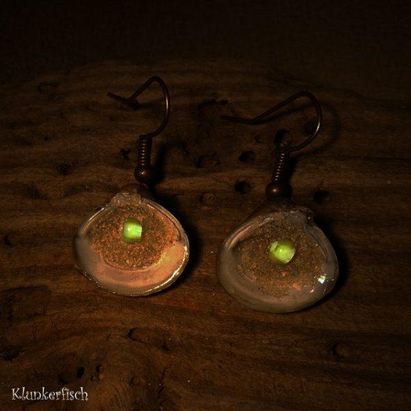 Ohrringe mit Muscheln und nachtleuchtenden Perlen