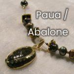 Paua / Abalone