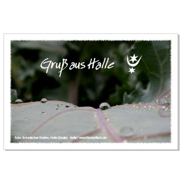 Postkarte von Halle